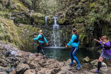 Green Levada Running Tour